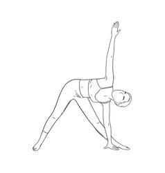 Woman in triangle yoga pose trikonasana pose vector