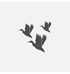 flying ducks in grayscale vector image