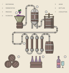 wine making process or winemaking infographic vector image vector image
