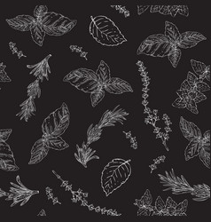 black and white seamless pattern with herbs vector image
