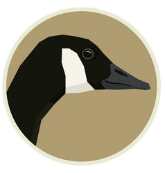 Canada goose of a bird in round frame vector
