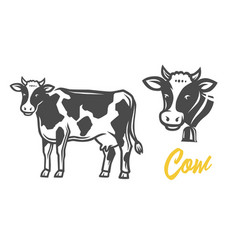 Cow black and white vector