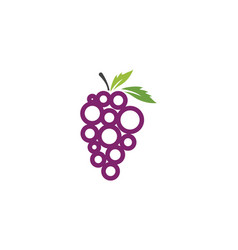 grapes icon design vector image