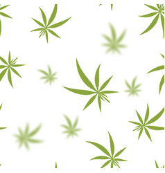 green cannabis leaves seamless background vector image