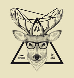hand drawn a deer head in hipster style vector image