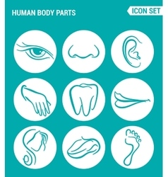 Set of round icons white Human body parts eyes vector