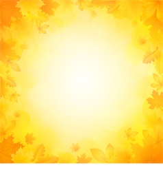 Autumn background of leaves vector image