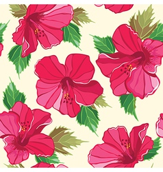 Floral seamless pattern with hibiscus vector image