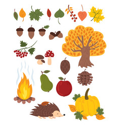 set of autumn elements collection of autumn vector image