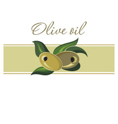 template for olive oil vector image