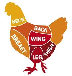chicken cuts diagram vector image vector image
