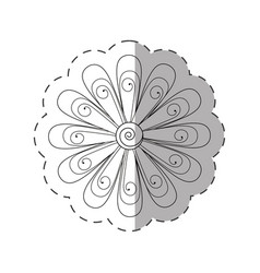 daisy flower decoration monochrome vector image vector image