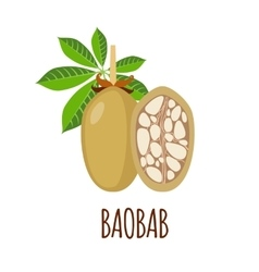 Baobab icon in flat style on white background vector image
