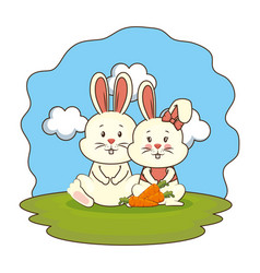 cute rabbits couple with carrot in the camp vector image