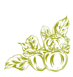 decorative object with apples and leaves vector image