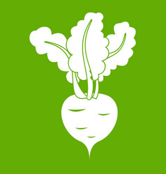fresh beetroot icon green vector image