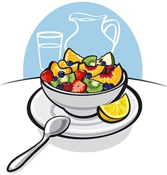 fresh fruit salad vector image