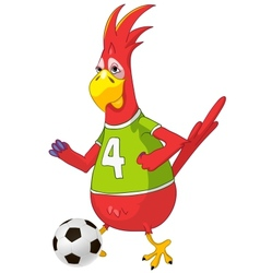 Funny Parrot Soccer vector image vector image