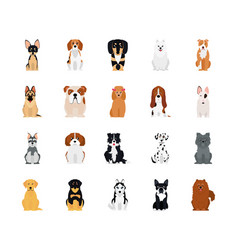 Icon set pinscher and dogs flat style vector