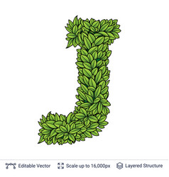letter j symbol of green leaves vector image