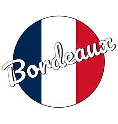Round button icon national flag france with vector
