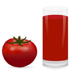tomato and glass of tomato juice vector image
