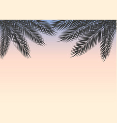 tropical sky at sunset with palm branches vector image