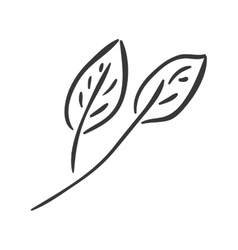 natural leaves icon vector image