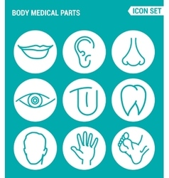 set of round icons white Body medical parts lips vector image