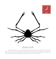 black silhouette of a japanese spider crab vector image vector image