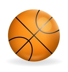 Realistic basketball ball icon sport symbol vector image