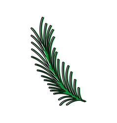 color rustic natural branch plant design vector image