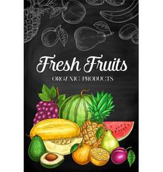 fresh fruits sketch blackboard farm food vector image