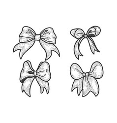 gift bow ribbon sketch vector image