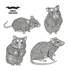 Hand drawn rat mouse and hamsters black ink vector