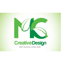 Mc green leaf letter design logo eco bio leaf vector