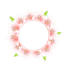 pink lily banner wreath vector image
