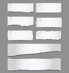 Torn Paper vector image vector image