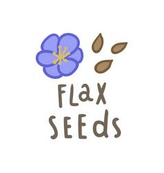 flax seeds superfood vector image