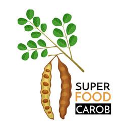 carob icon vector image