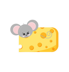 Cute mouse looking out hole in cheese vector