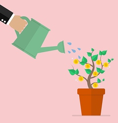 Hand watering money plant vector