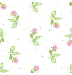watercolor hand drawn pink english rose seamless vector image