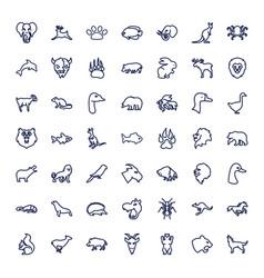 49 wild icons vector