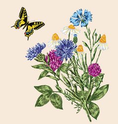 Butterfly and bouquet of the wildflowers vector