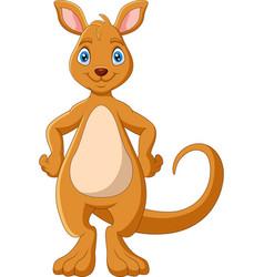 Cartoon funny kangaroo is smiling vector
