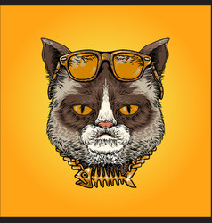 cute cat with sunglasses vector image