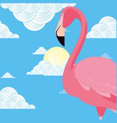 cute flamingo bird sky clouds sun vector image