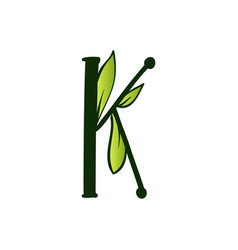 Doodling eco alphabet letter ktype with leaves vector