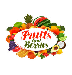 Fruits and berries banner natural food vector